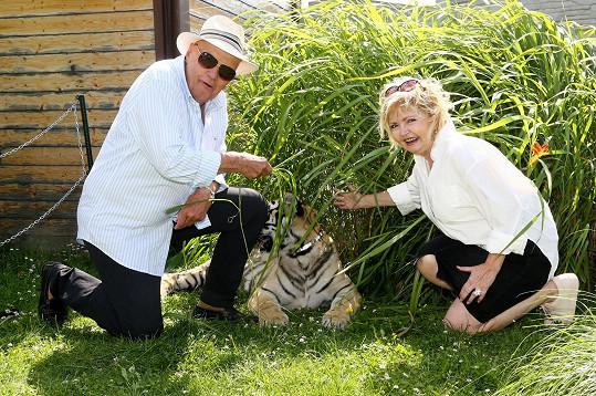 David je pozval i do zooparku, kde se mohli fotit s mladou tygřicí.