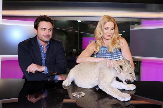 Ivana Gottová a Mirek Šimůnek laškují s malým lvíčkem.