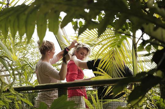 Část kampaně se natáčela ve skleníku, aby se docílilo iluze pralesa.