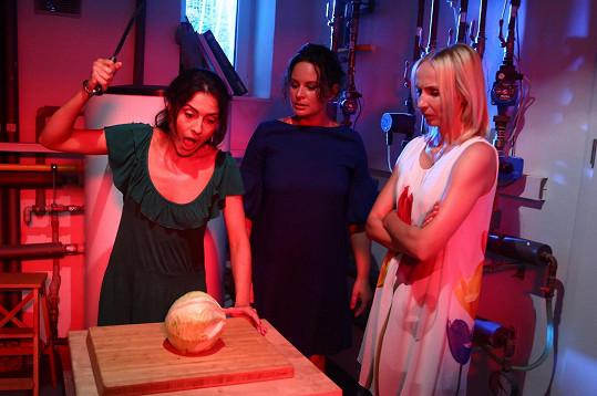 Lucia Siposová, Jitka Čvančarová a Jana Plodková si zahrají v seriálu Černé vdovy.