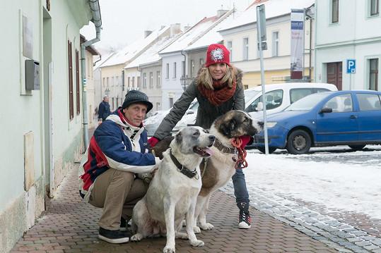 Tereza Pergnerová s partnerem Jiřím Chlebečkem a jejich psí smečkou.