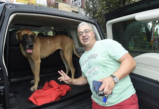 Martin si v autě přivezl svého psa na tiskovou konferenci Primy.