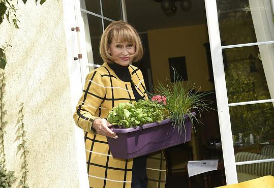 Kromě květin chce pěstovat i bylinky.