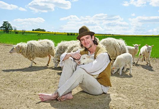 Pasáček ovcí Jan Komínek