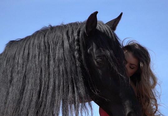 Petra Pudová a kůň Dominanto