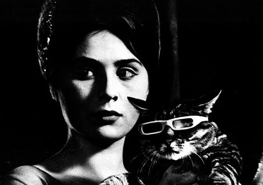Emília Vášáryová ve filmu Až přijde kocour. Tehdy jí bylo dvacet let.