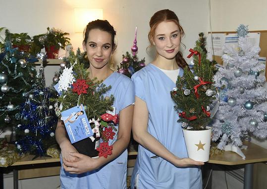S kolegyní Míšou Tomešovou nazdobily vánoční stromky pro seniory.