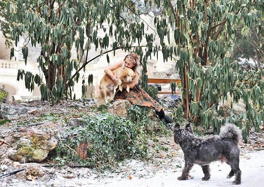 Její vlastní pes Punťa focení s týraným Atoskem přihlížel.