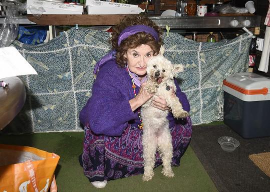 Eva Holubová s fenkou Konvalinkou, která je její filmovou parťačkou.