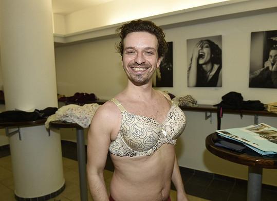 V představení se objeví také známý stepař Tomáš Slavíček.