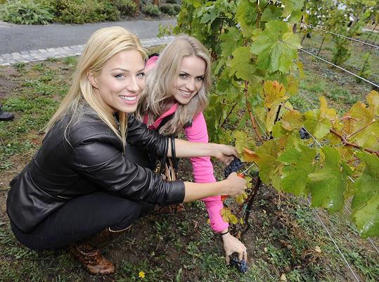 S Evou Perkausovou na vinobraní na Salabce v Troji