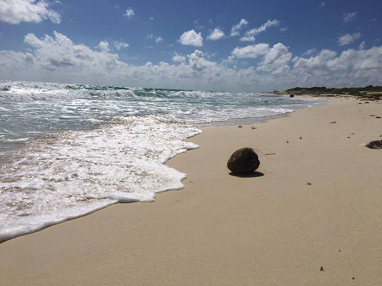 Na mexickém ostrově Cozumel