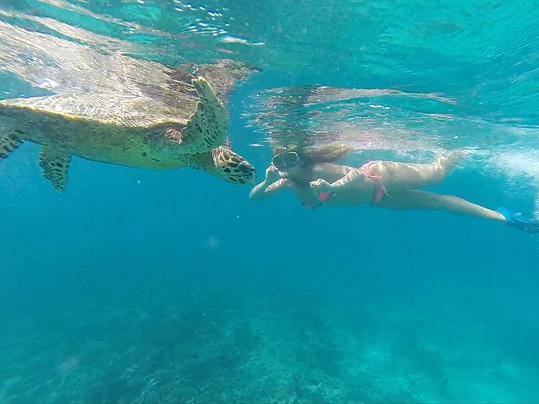 ...i želvou....