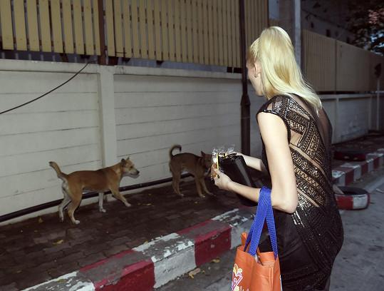 Míša Hávová se věnuje svému blogu a zvířatům.