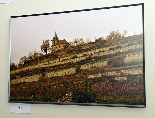 Krajina s vinicemi na Mělnicku
