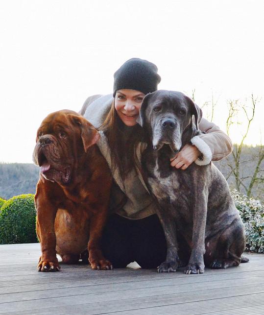 Anna K. nedávno o obě psí lásky přišla.