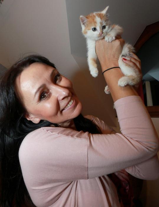 Heidi s kotětem ve studiu