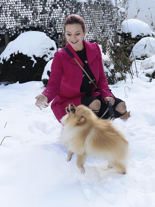 Sníh a zimu Bářin pejsek miluje.