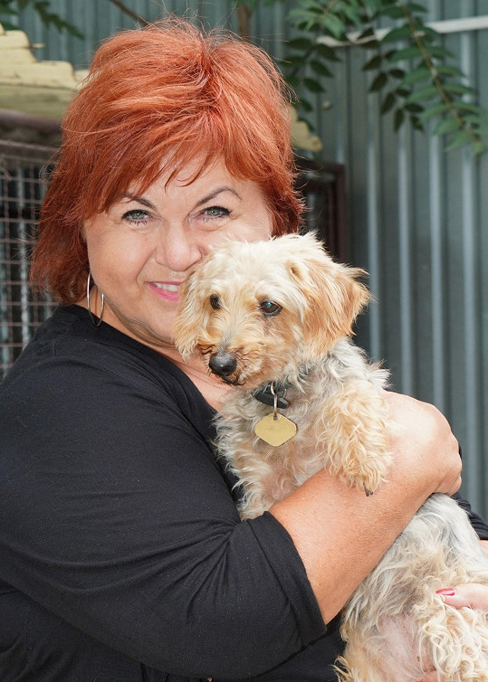Hanka Křížková navštívila s kolegy psí útulek.