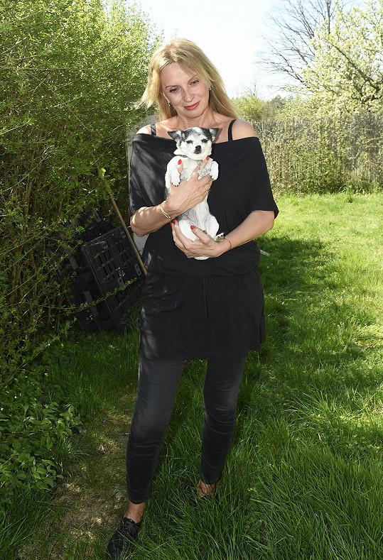 Ivana Chýlková loni točila film o psím tulákovi.