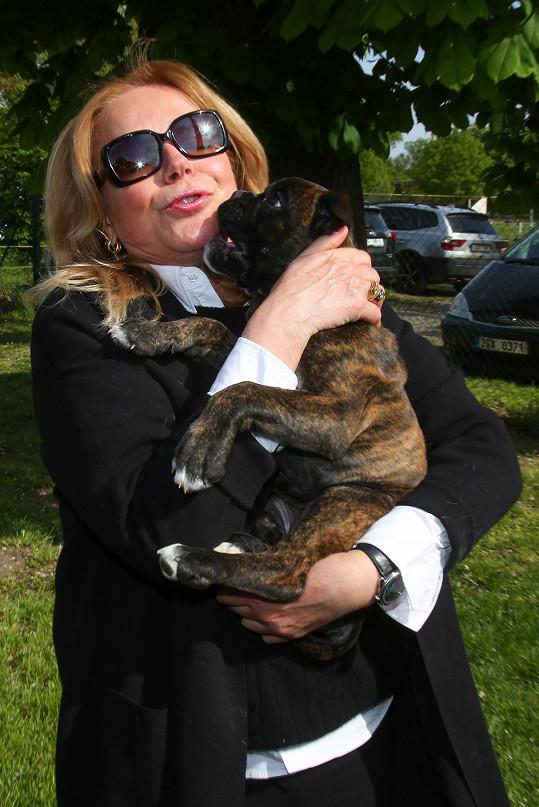 Dagmar Havlová je velkou milovnicí pejsků.