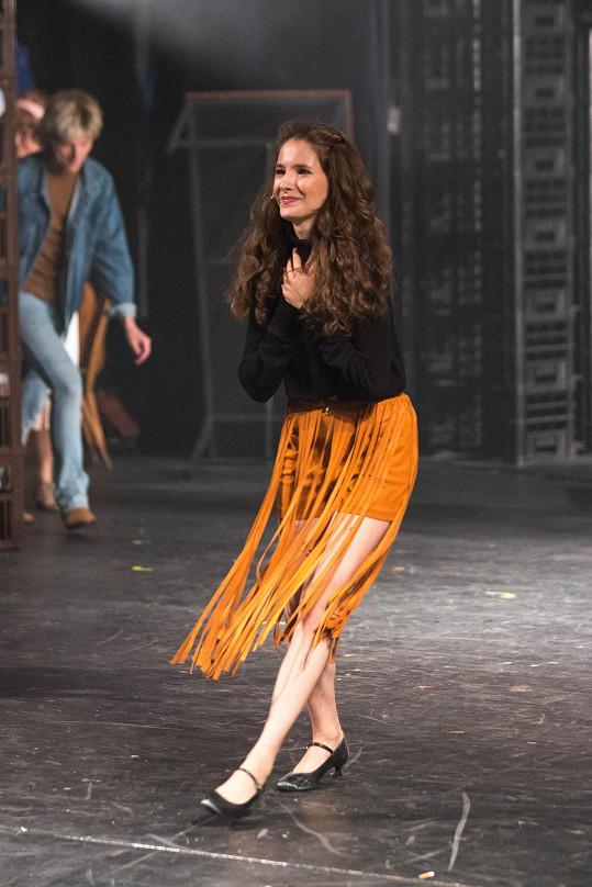 Premiéra se konala v Divadle Na Fidlovačce.