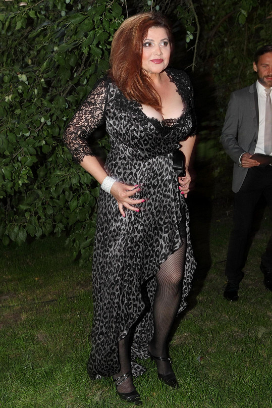 Je to Ilona, nebo její travestie kopie? Tygrované šaty hodné Peggy Bundové ze seriálu Ženatý se závazky, příliš tvrdé líčení a vlasový styling v podobě chumlu ze zpěvačky udělaly vlastní karikaturu.