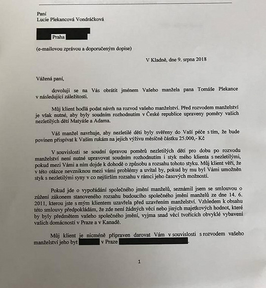Návrh, podle kterého Plekanec nabídl Lucii byt v Praze a 25 tisíc korun měsíčně na obě děti.