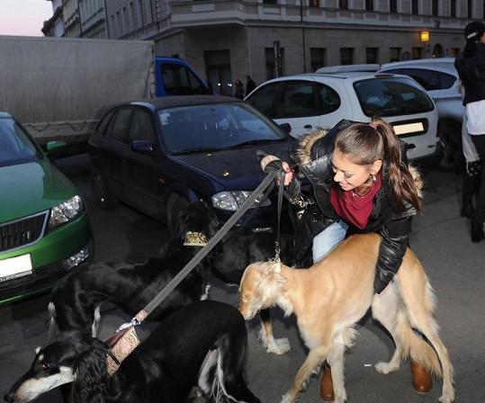 Petra je sice drobounká, ale své psy zvládá.