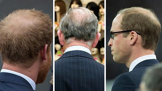 Poznáte členy britské královské rodiny zezadu?