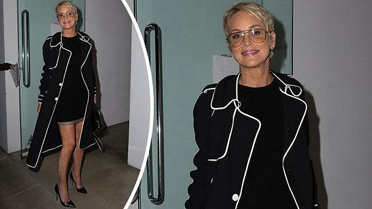 Sharon Stone vedla diskuzi o mozkových onemocněních žen.