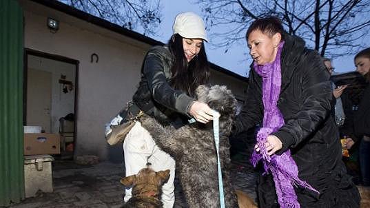 Sandru Novákovou nechtěl obrovský pes ani pustit.
