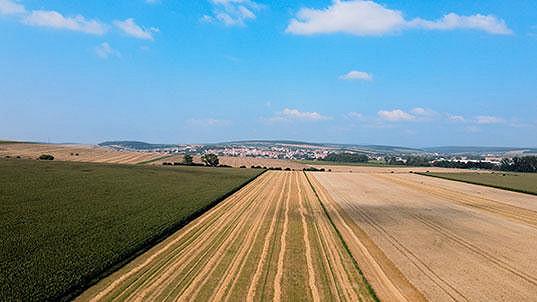 Vzhledem ke spolupráci s realitní kanceláří MM reality disponuje společnost rozsáhlou databází zájemců o zemědělskou půdu.
