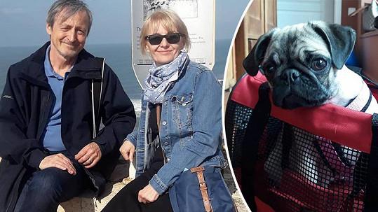 Veronika Žilková řeší trable s přepravou dalšího psa do Izraele.