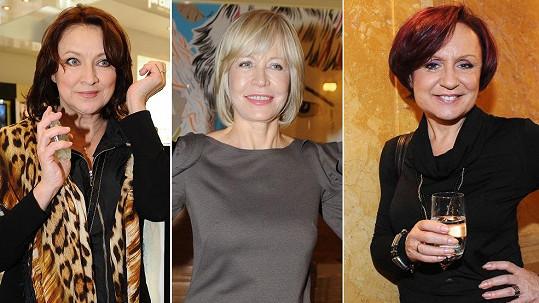 Tyhle tři české hvězdy mají zastoupit oscarovou herečku Meryl Streep.