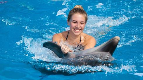 Lidé byli v šoku! Tenhle delfín znásilnil slečnu zpublika