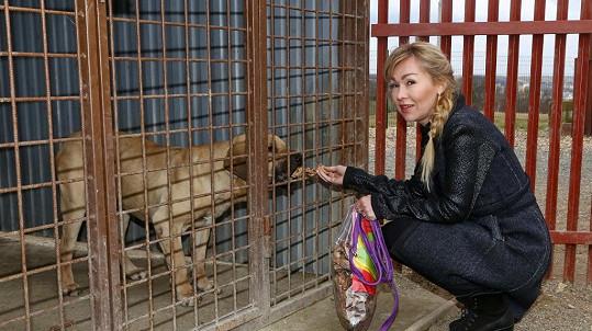 Kateřina Kaira Hrachovcová pejsky zbožňuje.