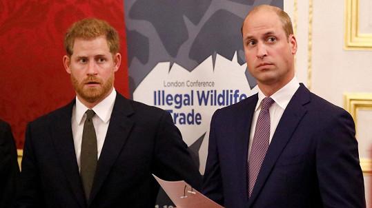 Harry a William údajně zase komunikují.