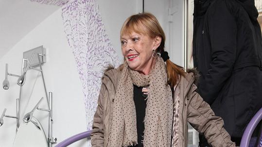 Jana Šulcová přišla na akci do kadeřnického salonu o holi.