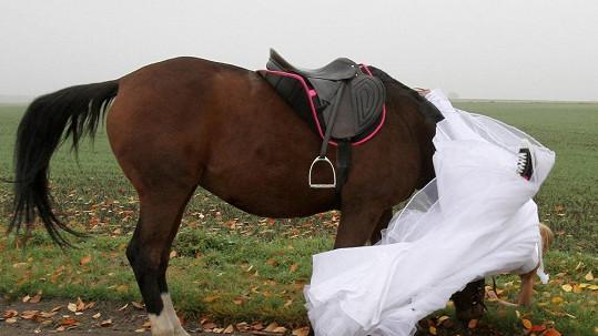 Kateřina Průšová spadla z koně.
