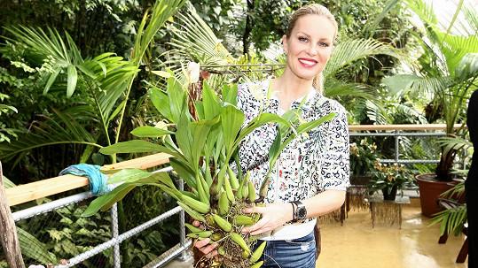 Simona Krainová zahájila vtropickém skleníku Fata Morgana výstavu orchidejí.