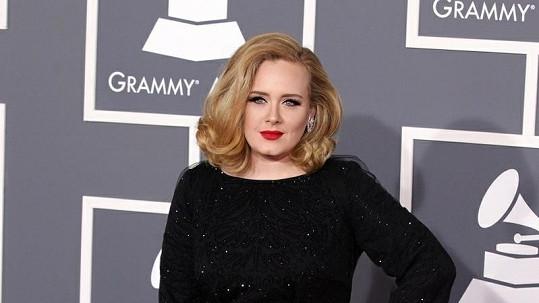 Zpěvačka Adele se těší na mateřské povinnosti.