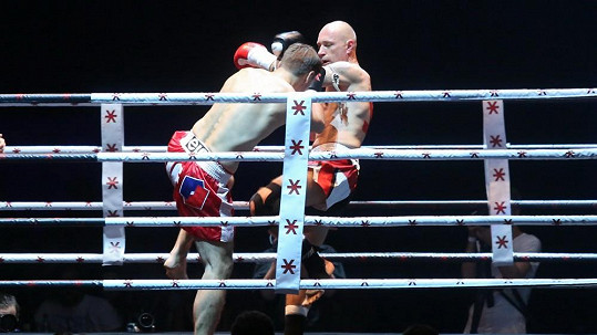 Daniel Landa v ringu