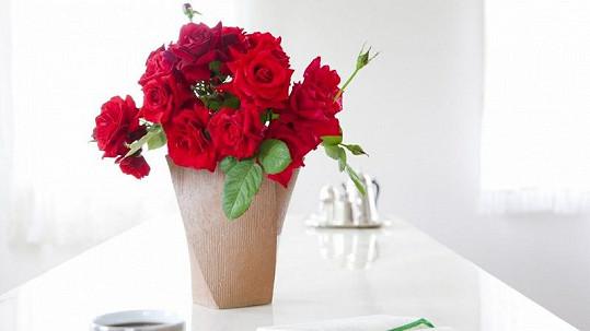 Viagra může být vzpruha nejen pro muže, ale i pro květiny.