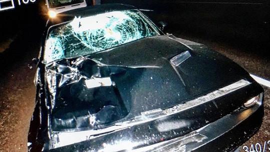 Půjčené auto zdemoloval los.