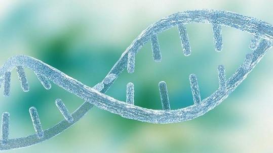 DNA seznamka není už žádným sci-fi, spustili ji v Německu.