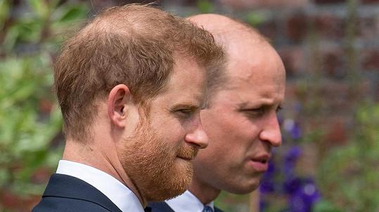 Bratři Harry a William při odhalení sochy princezny Diany v Kensingtonských zahradách