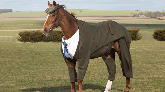 Módu už předvádí i kůň.
