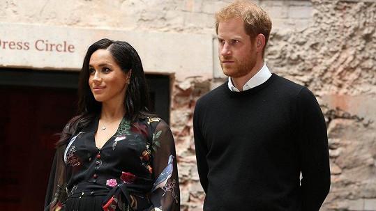 Meghan a Harry se těší na první dítě.