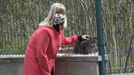 Bývalá modelka Melánie Vančurová se stará o opuštěné kočky.